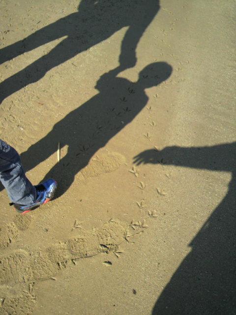 ふるさとの浜辺公園