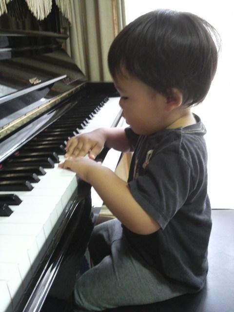 ピアニスト?